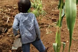 Clare-Douglas-A-Young-Gardener-Tanzania